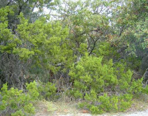 Sold Property | 21704 Patton  DR Lago Vista, TX 78645 0