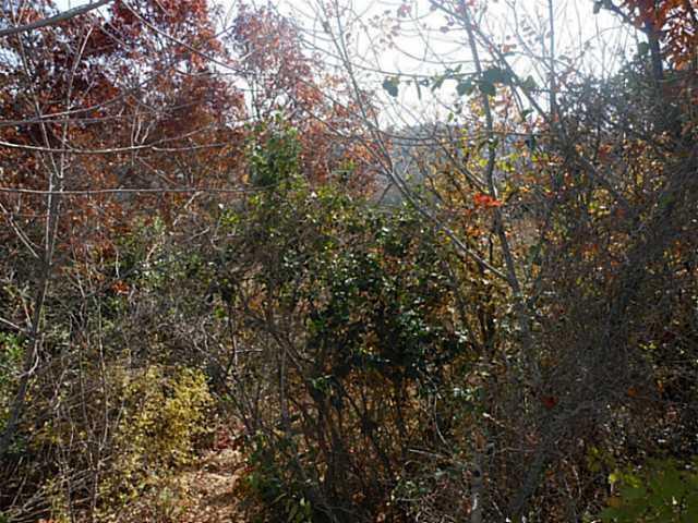 Sold Property | 11111 Lakeside  DR Jonestown, TX 78645 6