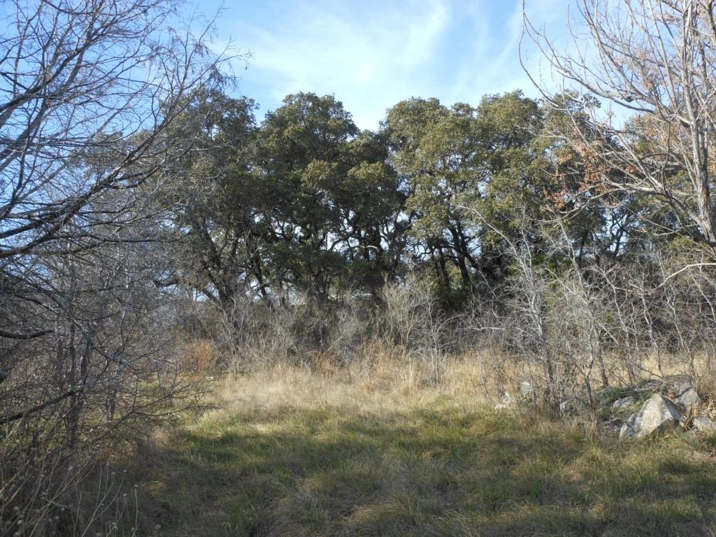 Sold Property | 18312 Center  ST Jonestown, TX 78645 0