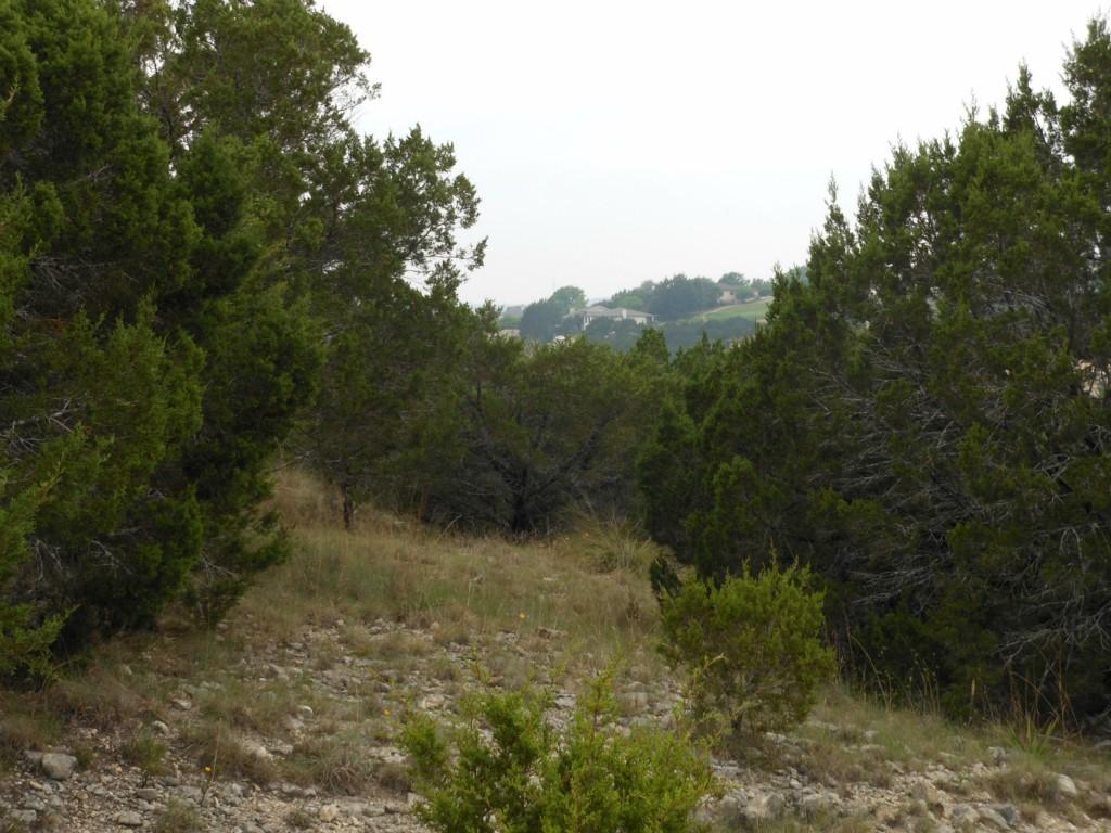 Sold Property | 20011 Carnege  CV Lago Vista, TX 78645 0