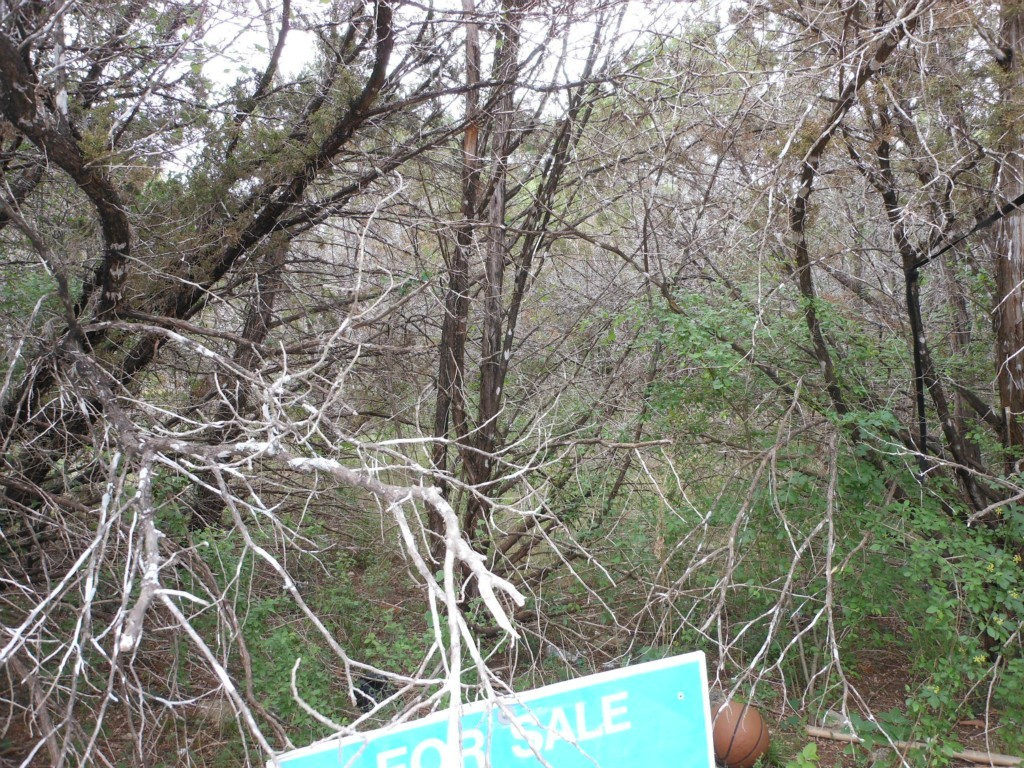 Sold Property | 11105 4th  ST Jonestown, TX 78645 2