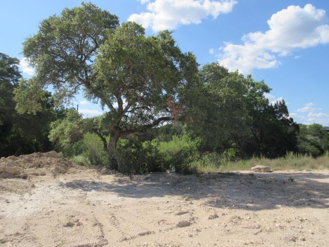 Sold Property | 19908 Blanco  DR Lago Vista, TX 78645 3