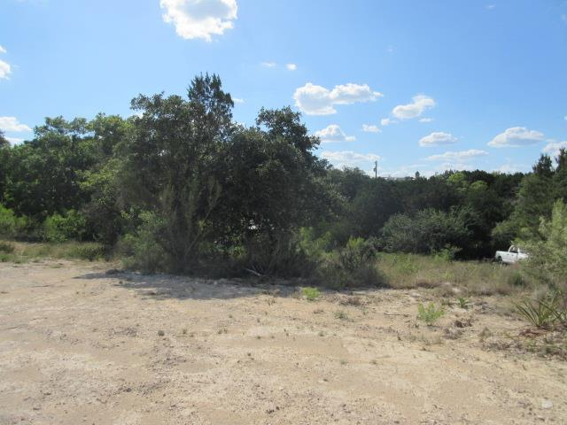 Sold Property | 19908 Blanco  DR Lago Vista, TX 78645 4
