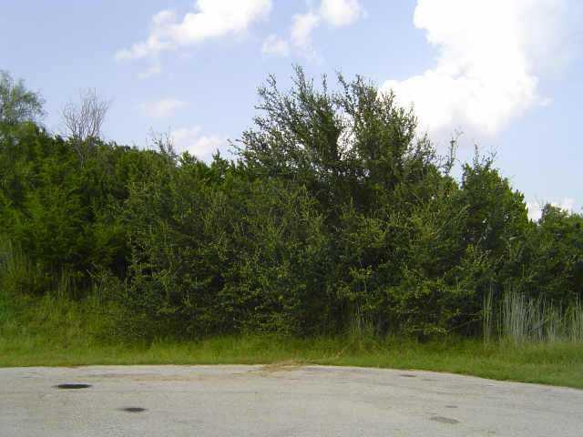 Sold Property | 2607 Winthrop  CV Lago Vista,  78645 2