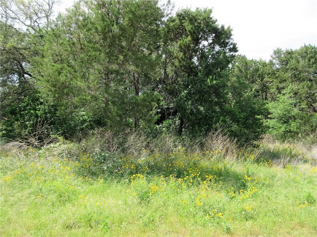 Sold Property | 11010 5th  ST Jonestown, TX 78645 1