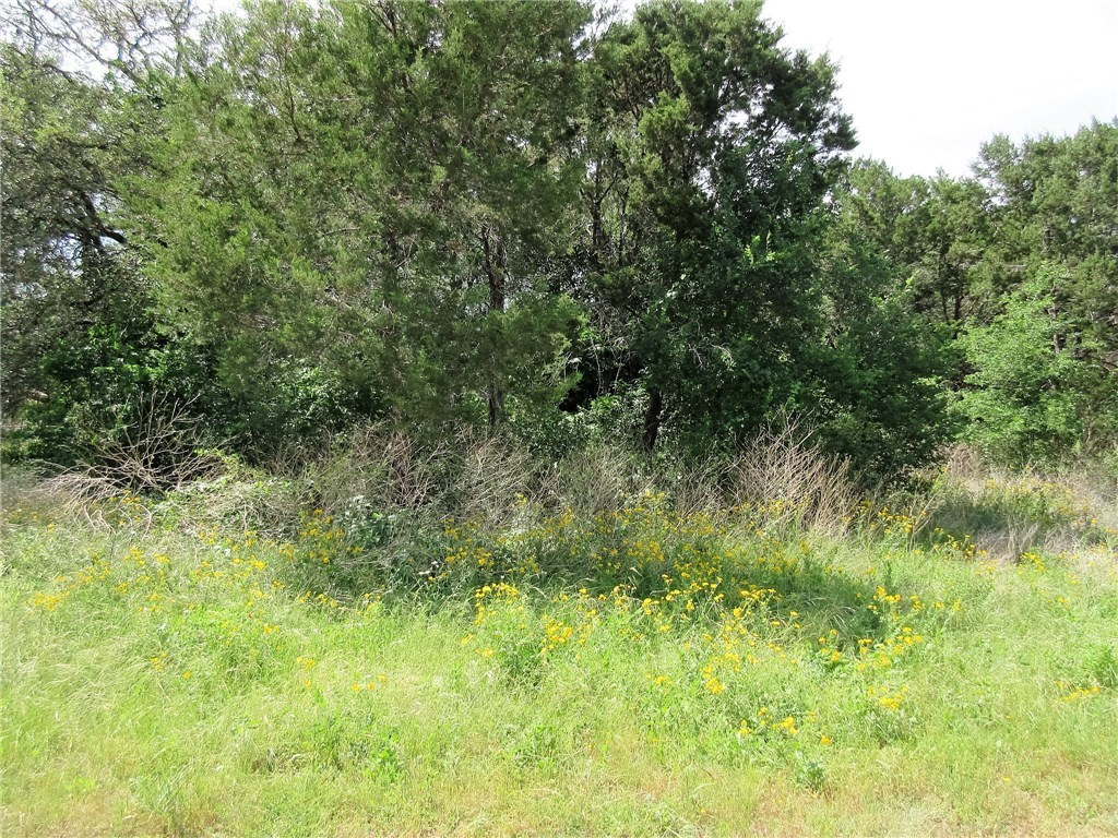 Sold Property | 11010 5th  ST Jonestown, TX 78645 2