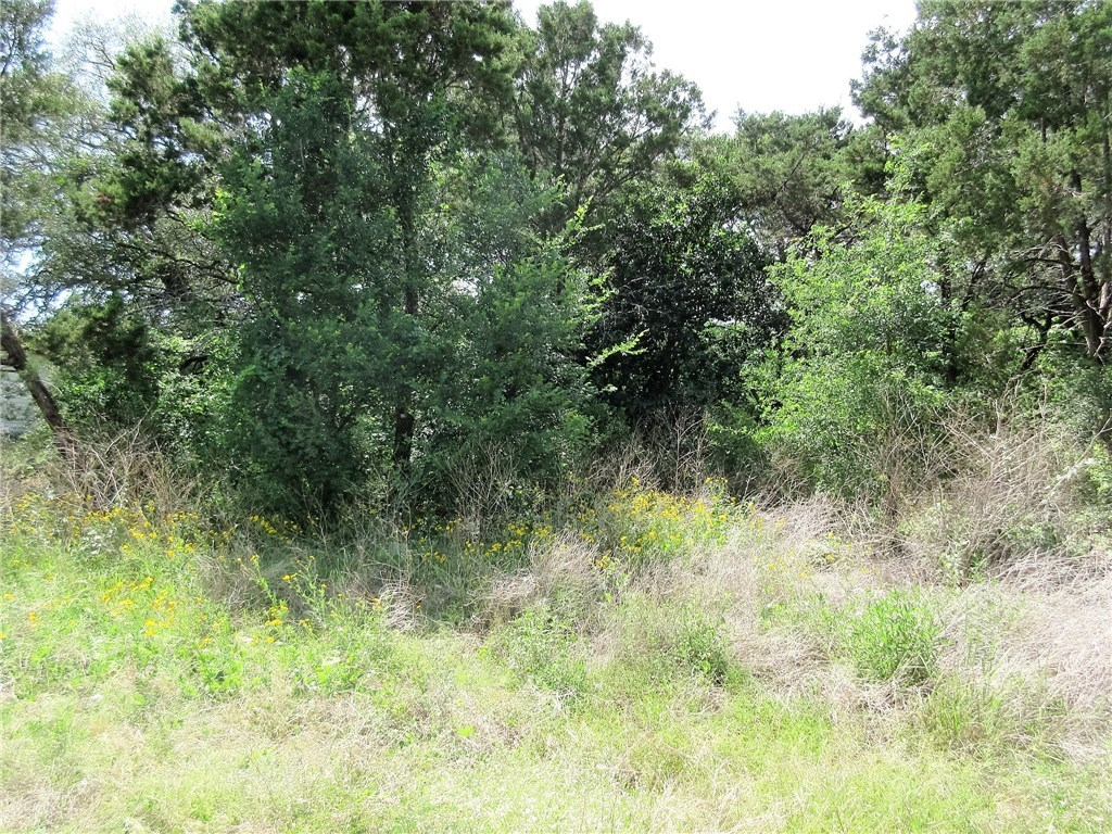 Sold Property | 11010 5th  ST Jonestown, TX 78645 4