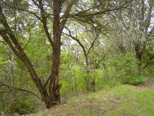 Sold Property | 0 F M RD 1431 Jonestown, TX 78645 5