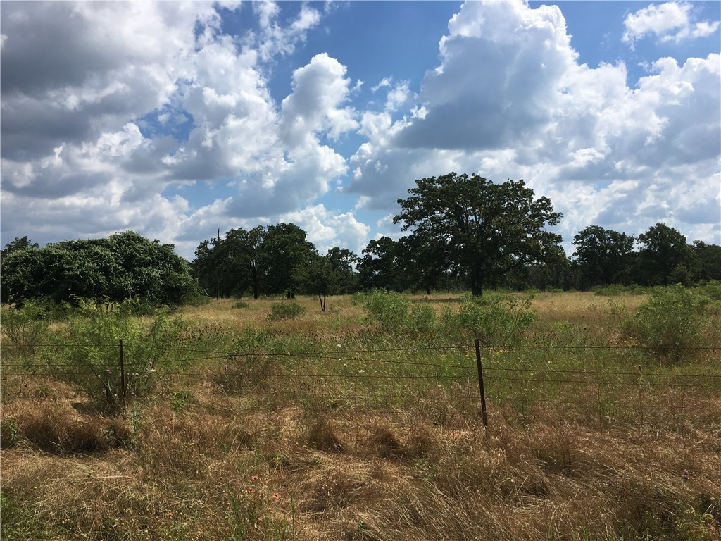 Sold Property | TBD 60 acres Cross  CRK Georgetown, TX 78628 3