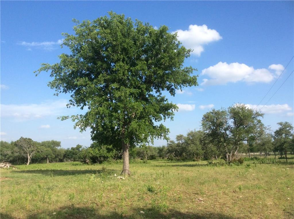 Sold Property   239 S Encino  XING Liberty Hill, TX 78642 0