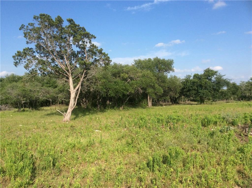 Sold Property   239 S Encino  XING Liberty Hill, TX 78642 1