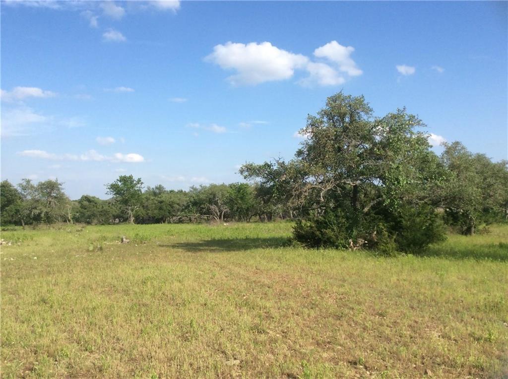 Sold Property   239 S Encino  XING Liberty Hill, TX 78642 2