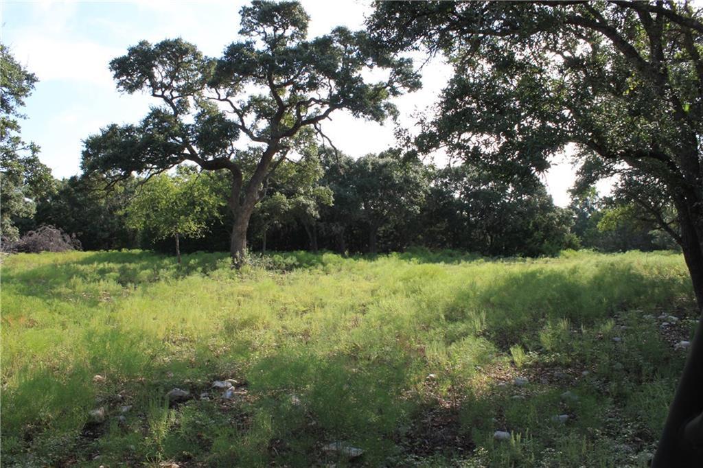 Sold Property   239 S Encino  XING Liberty Hill, TX 78642 4