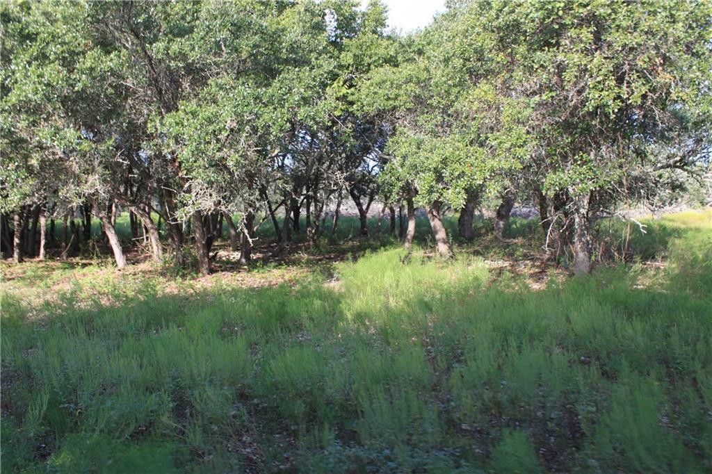 Sold Property   239 S Encino  XING Liberty Hill, TX 78642 5