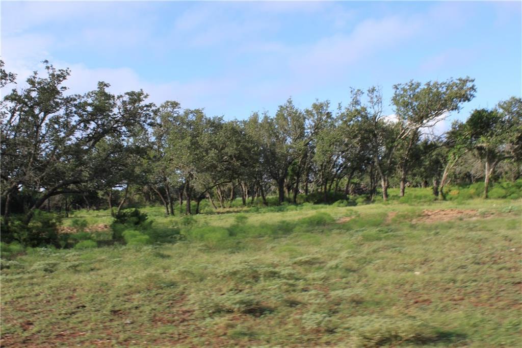 Withdrawn | 250 S Encino  XING Liberty Hill, TX 78642 4