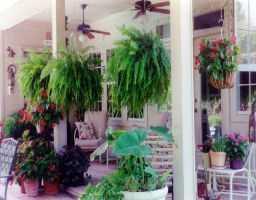 Sold Property | 12300 AUDANE  DR Austin, TX 78727 4