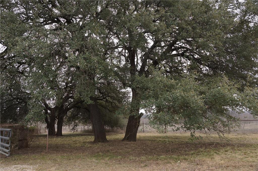 Sold Property | TBD County Road 137  Carlton, Texas 76436 13