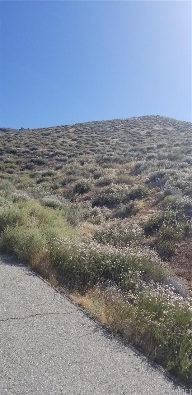 Closed | 0 El Camino Drive Palmdale, CA 93551 7
