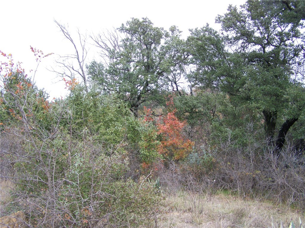 Sold Property | 183-85 Valley View Dr  Brownwood, TX 76801 2