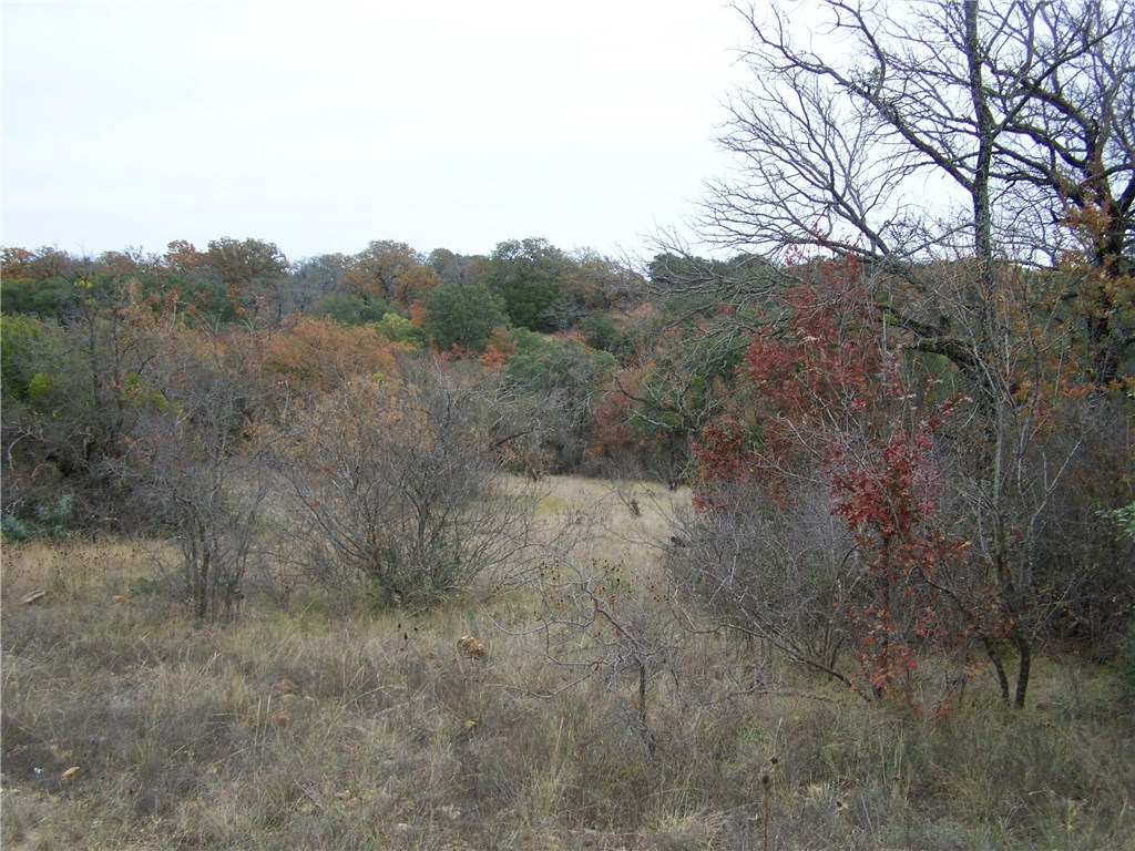 Pending | 183-85 Valley View Dr  Brownwood, TX 76801 3