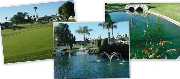 Closed | 420 Palomar Drive Hemet, CA 92543 25