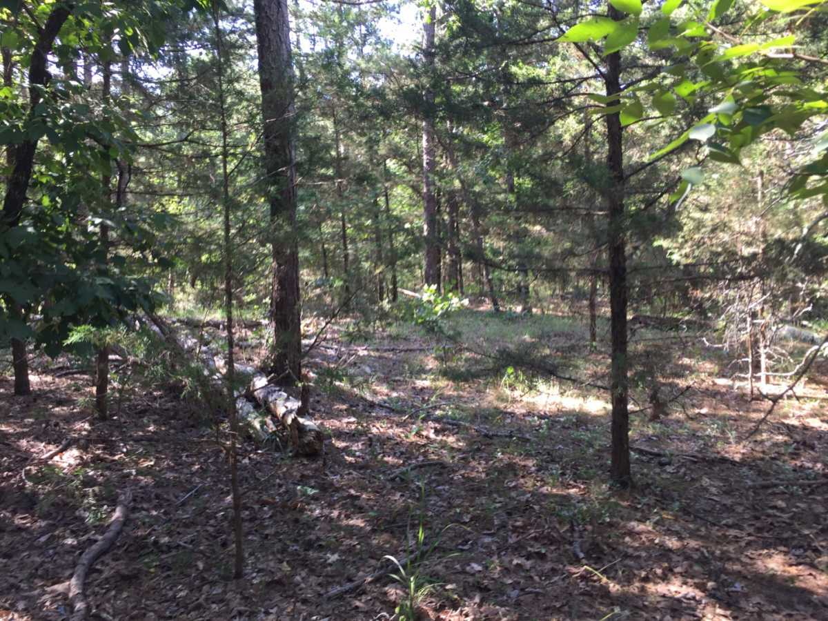 Active | Wolf Trail Lot #3 Moyers, OK 74523 10