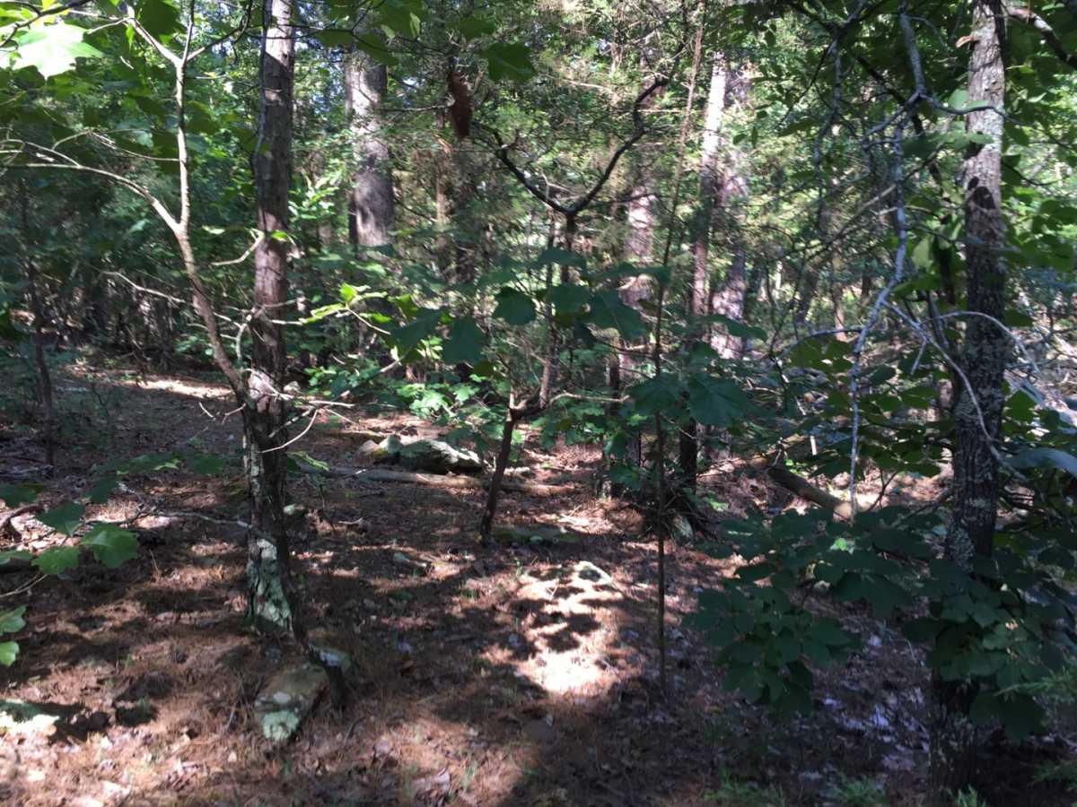 Pending | Wolf Trail Lot #3 Moyers, OK 74523 16