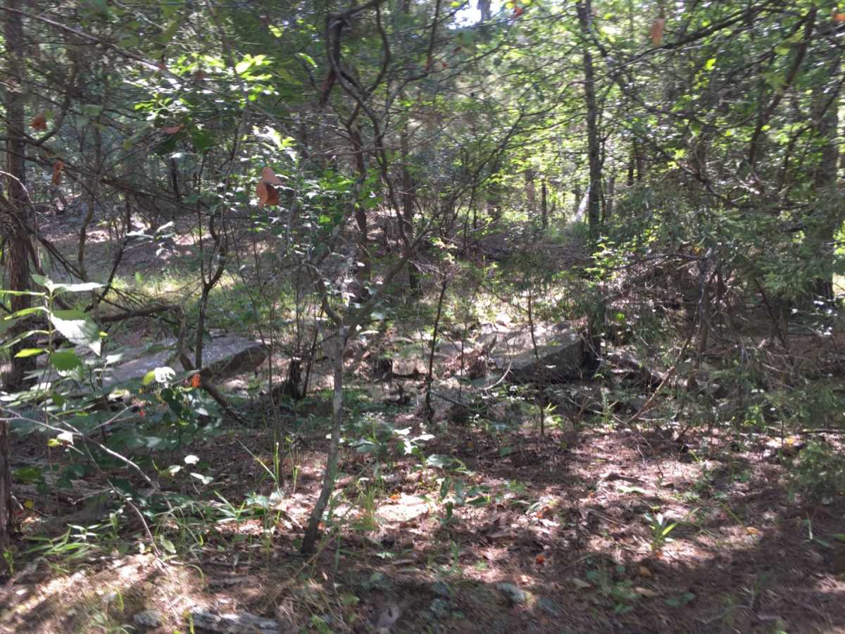 Active | Wolf Trail Lot #3 Moyers, OK 74523 18