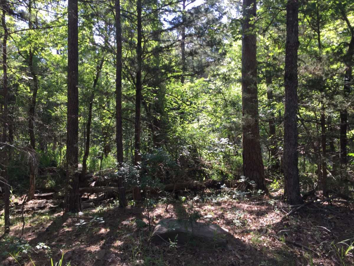 Active | Wolf Trail Lot #3 Moyers, OK 74523 19