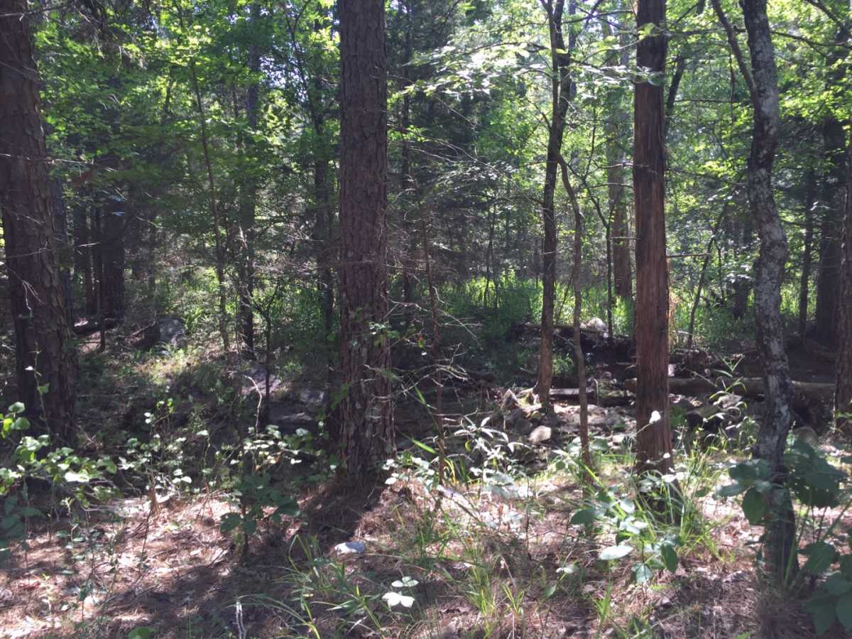 Pending | Wolf Trail Lot #3 Moyers, OK 74523 20