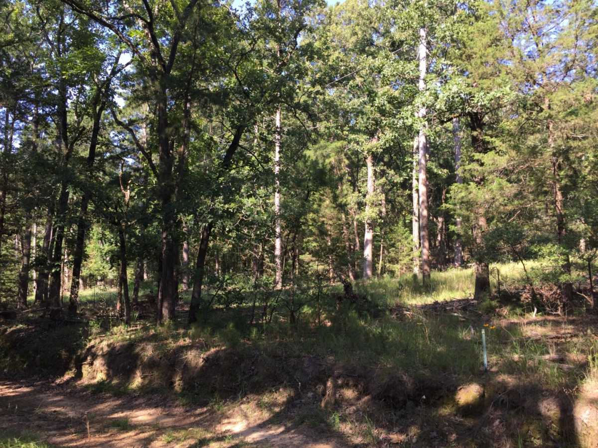 Pending | Wolf Trail Lot #3 Moyers, OK 74523 23