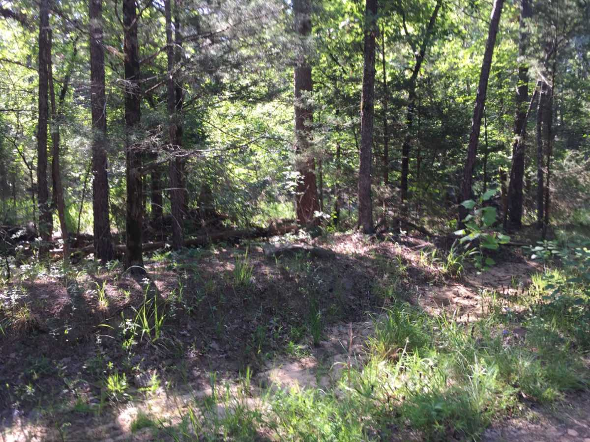 Active | Wolf Trail Lot #3 Moyers, OK 74523 24