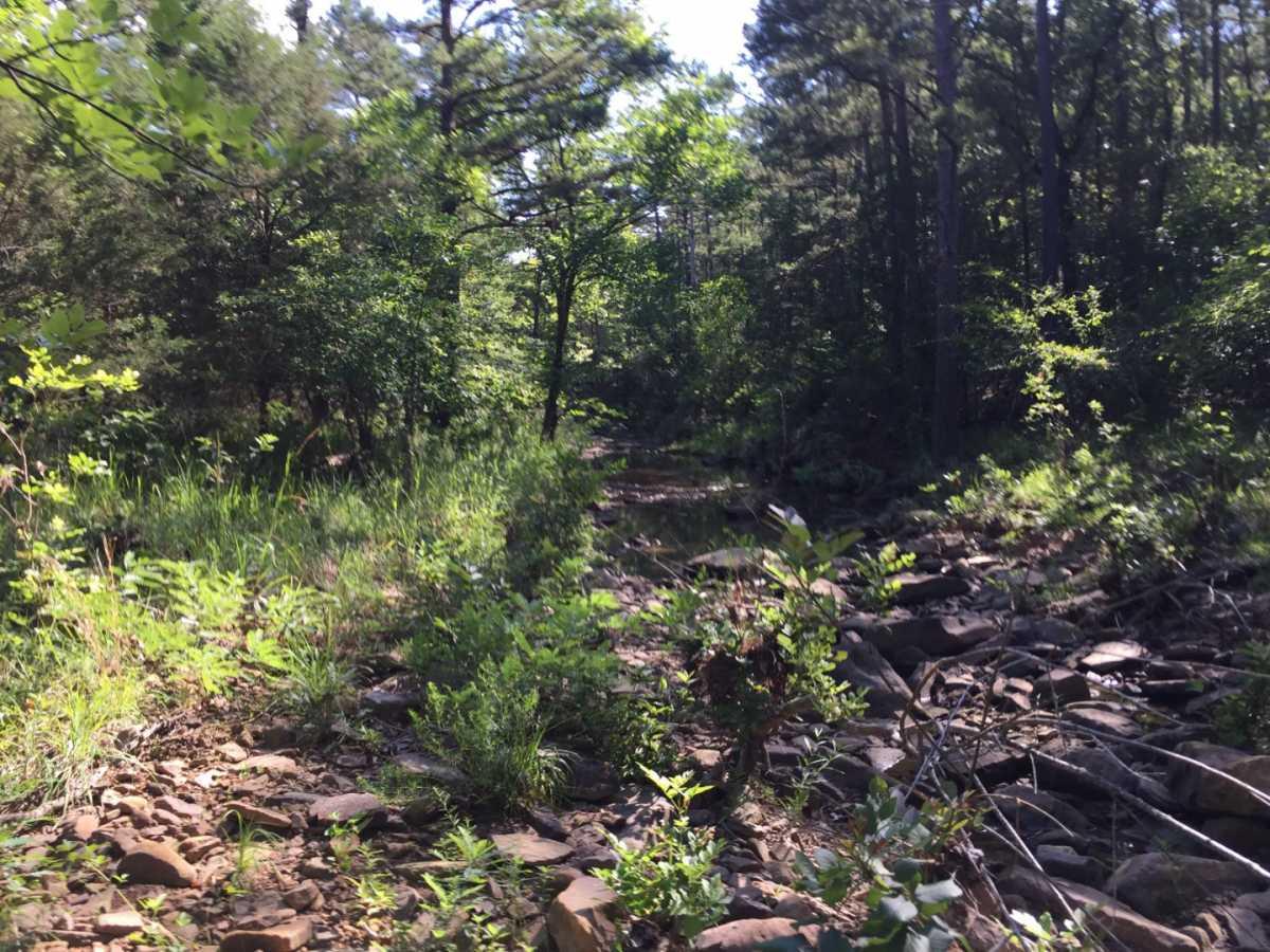Pending | Wolf Trail Lot #3 Moyers, OK 74523 3