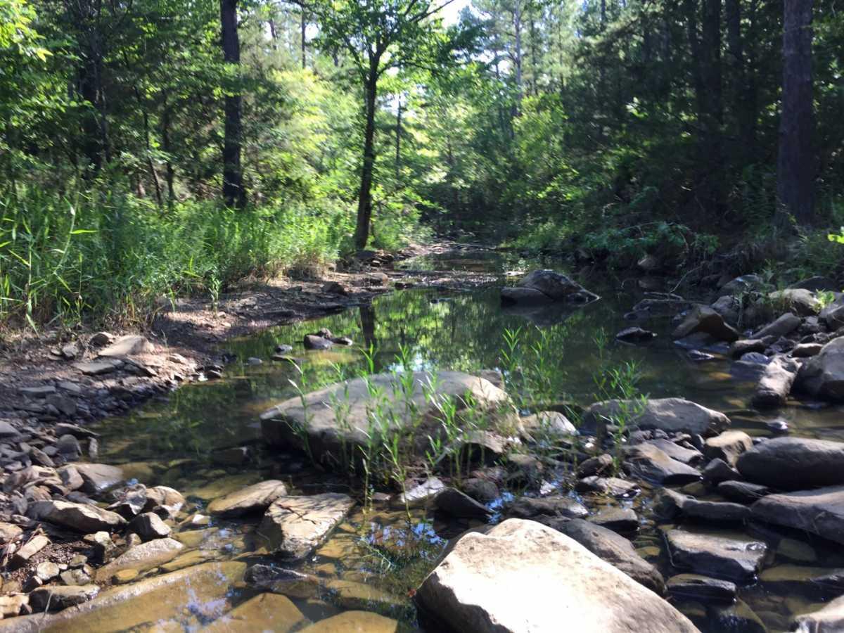 Pending | Wolf Trail Lot #3 Moyers, OK 74523 4