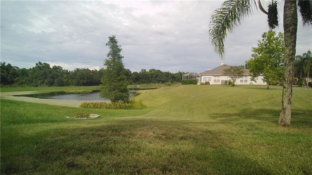 Sold Property | 12412 WINDMILL COVE  DRIVE RIVERVIEW, FL 33569 44