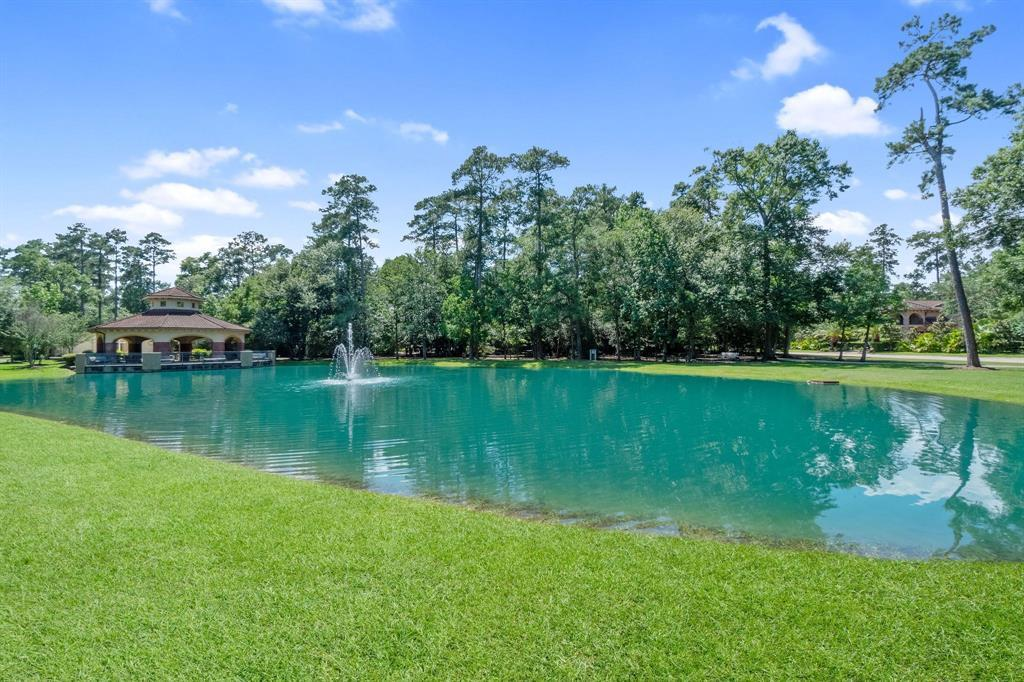 Active | 19 Cantwell Way The Woodlands, Texas 77382 9