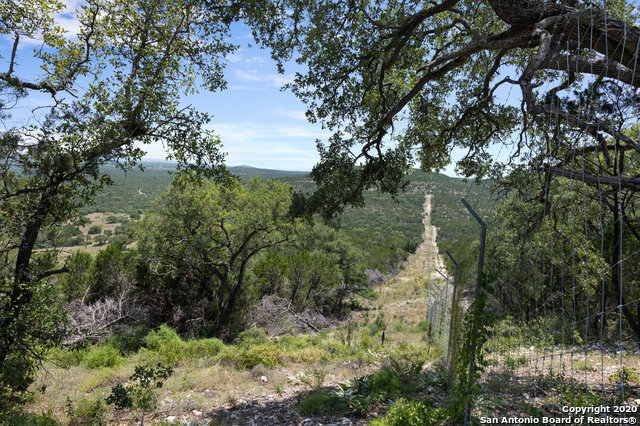 Hunting, Hill Country Home, Exotics, High Fence, Live Water | 12120 Cow Creek Rd Marble Falls, TX 78654 50