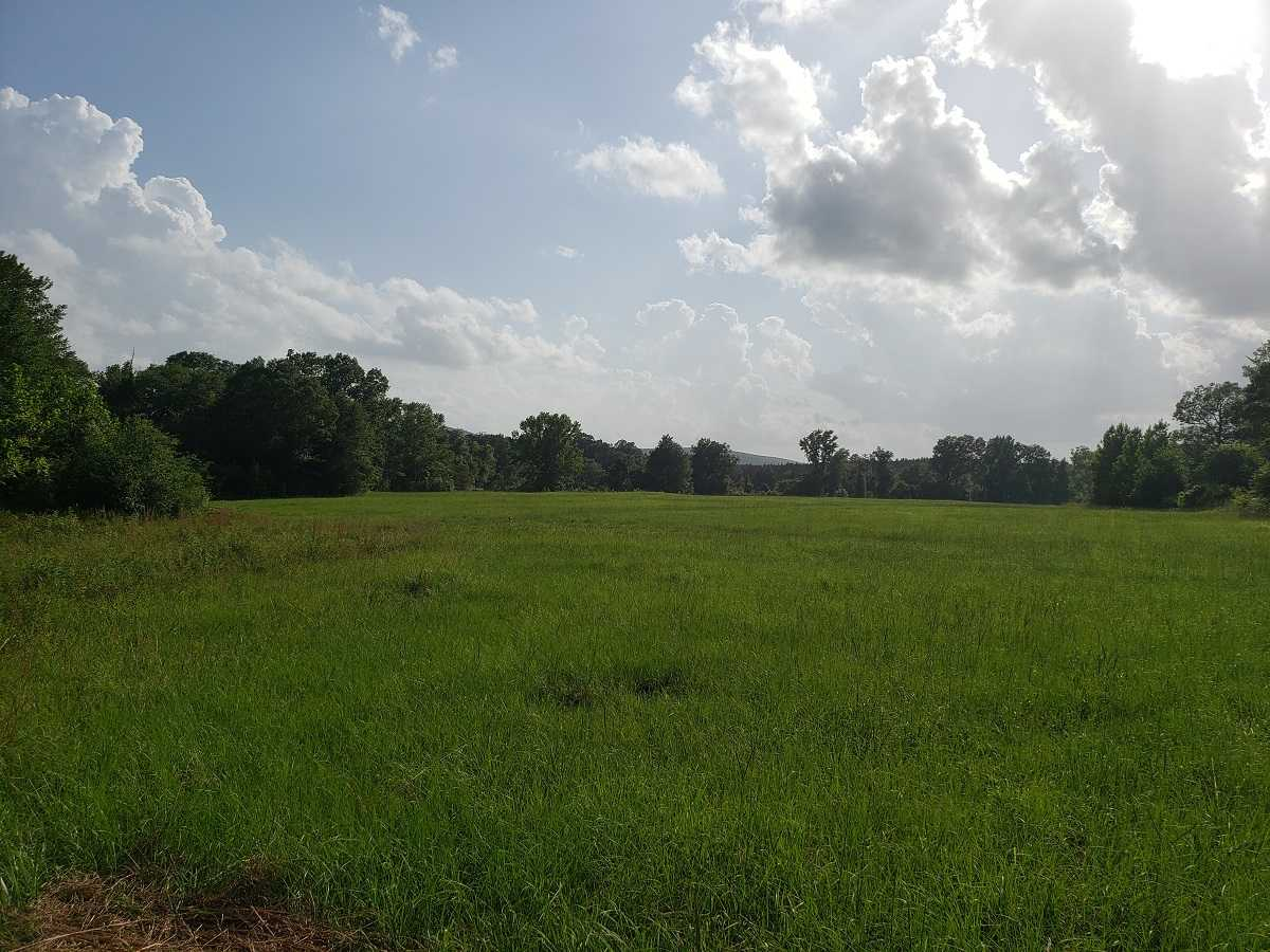 Active | RIVER FRONT 80 ACRES Nashoba, OK 74558 28