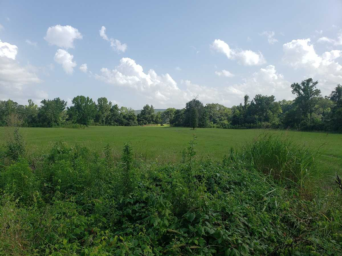 Active | RIVER FRONT 80 ACRES Nashoba, OK 74558 4