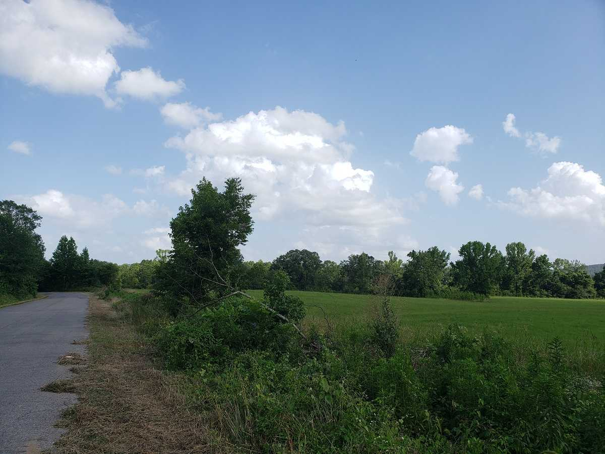 Active | RIVER FRONT 80 ACRES Nashoba, OK 74558 5