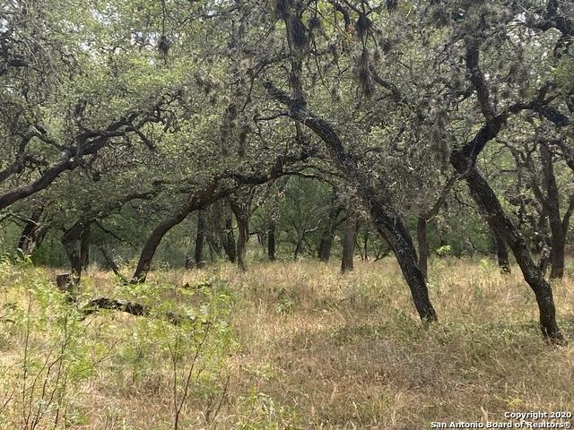 Active | 220 Hibiscus Ln Castle Hills, TX 78213 4