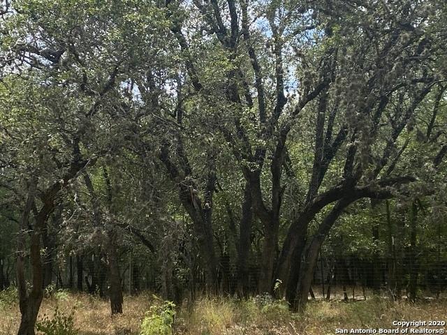 Active | 220 Hibiscus Ln Castle Hills, TX 78213 7