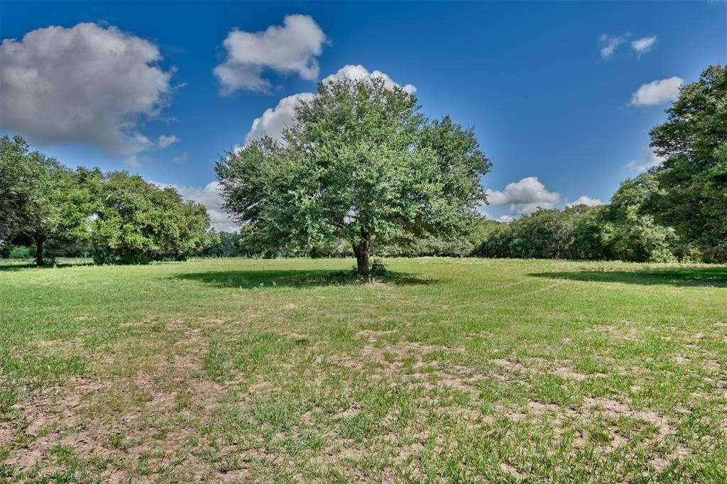 Escape to the McCain Ranch in Sheridan Texas! | 1233 County Road 255 Sheridan, TX 77475 29