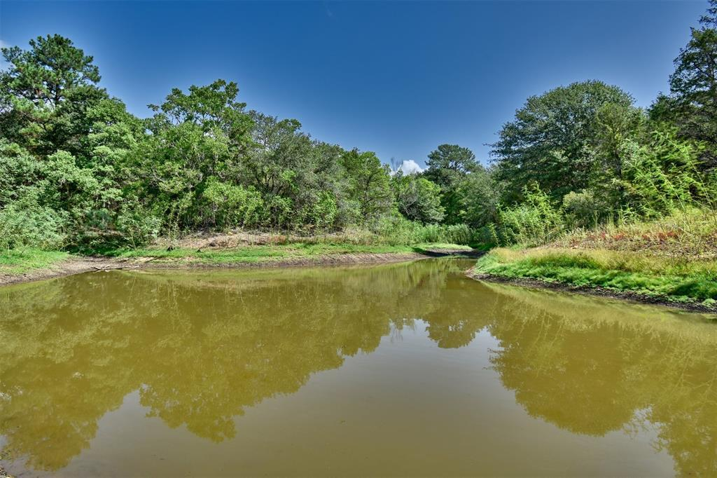 Paradise Found at the Sunset Ranch in New Ulm! | 2142 Sunset  Lane New Ulm, TX 78950 30