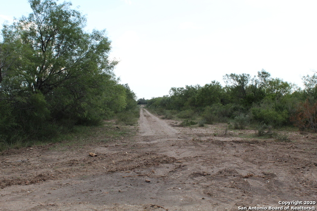 Active   10333 FM 2779 - Tract 21 Pearsall, TX 78061 27