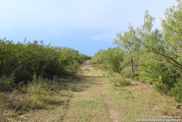Off Market | 10333 FM 2779 - Tract 19 Pearsall, TX 78061 11