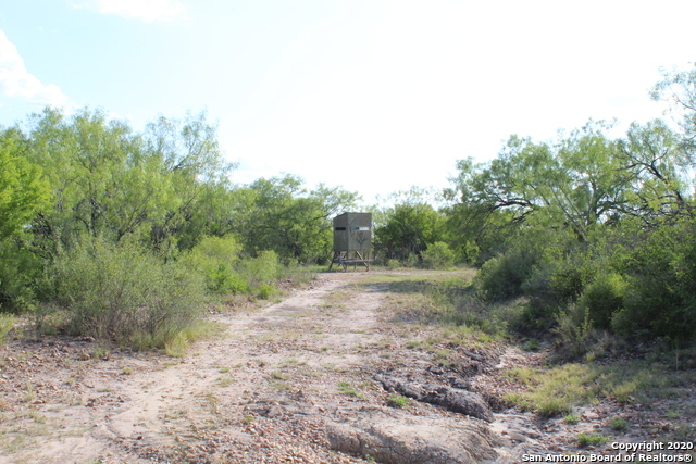 Off Market | 10333 FM 2779 - Tract 19 Pearsall, TX 78061 12