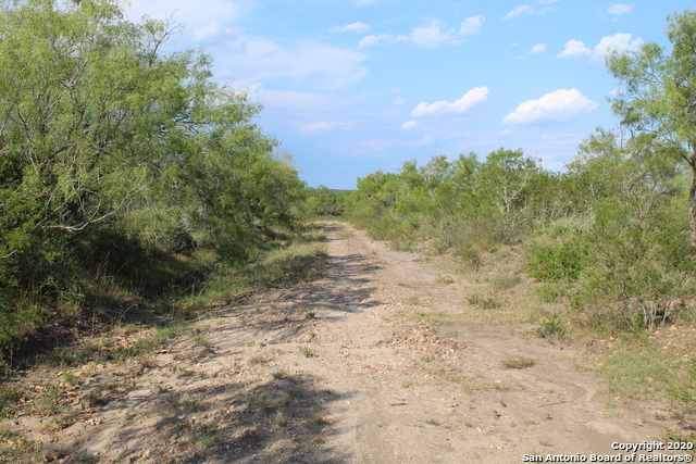 Off Market | 10333 FM 2779 - Tract 19 Pearsall, TX 78061 13