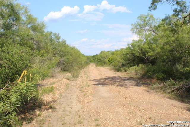 Off Market | 10333 FM 2779 - Tract 19 Pearsall, TX 78061 16