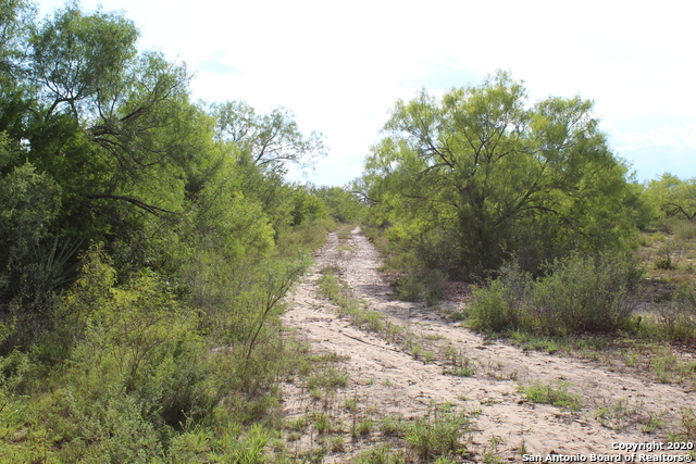 Off Market | 10333 FM 2779 - Tract 19 Pearsall, TX 78061 21